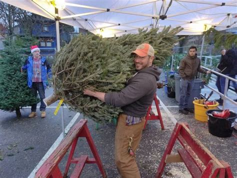 best seattle tree lot the sads it s the end of sasg s annual tree fundraiser seattle your daily