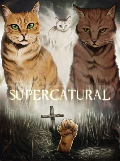 supernatural cat cats castiel warrior dean sam fanart winchester fan season fanpop spn fans ized four edition lucifer drawings sobrenatural