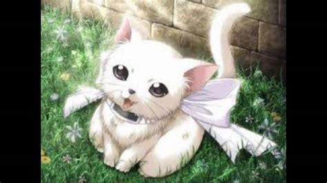 Cute White Puppies Wallpaper Cute Anime Animals Youtube