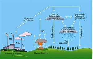 Science In The News  Acid Rain