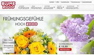 Dein Design Gutschein : coupon database 101 igvault gutschein fifa 17 plettenberg aquamagis gutschein ~ Markanthonyermac.com Haus und Dekorationen