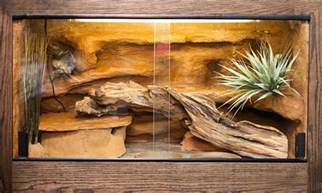 Bearded Dragon Tank Flooring by Sand For Your Leopard Gecko