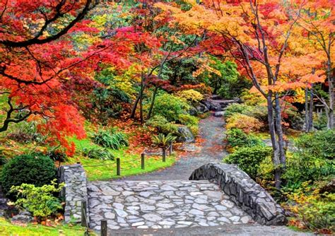 Beautiful Autumn Garden by Japanese Garden Seattle Washington Who S Ready For