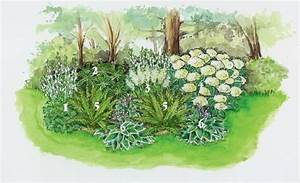 Blumenbeete Zum Nachpflanzen : schattige pl tze im garten 3 ideen zum nachpflanzen gartenideen pinterest garten ~ Yasmunasinghe.com Haus und Dekorationen