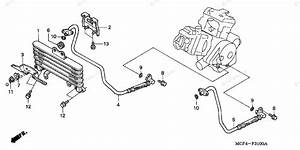 Honda Motorcycle 2000 Oem Parts Diagram For Oil Cooler