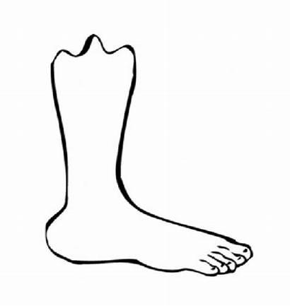 Foot Coloring Feet Printable Human Clipart Colouring
