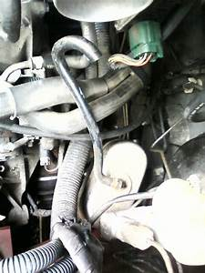 2003 Nissan Altima 2 5l With A Disconnected Vacuum Line On