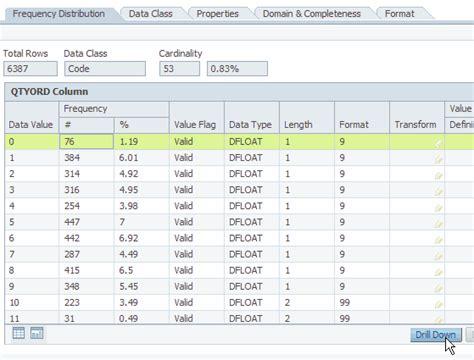 Data Profiling Analysis