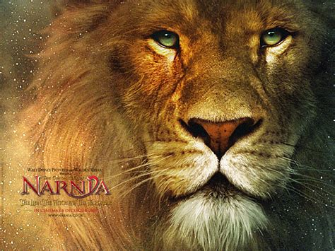 Journal Of A Life Journey  The Chronicles Of Narnia Movies
