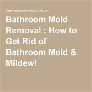Mold removal basements and woods on pinterest for How to get rid of mold in the bathroom walls