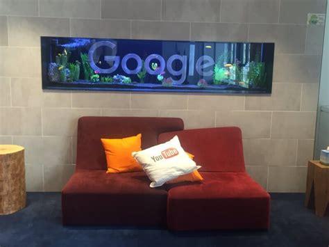 search  pics seo robots google fish tank  koala