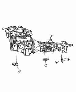 2003 Jeep Liberty Switch  Back Up Lamp  Drivetrain
