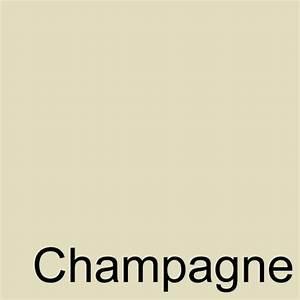 champagne colour - Google Search | Colours | Pinterest ...