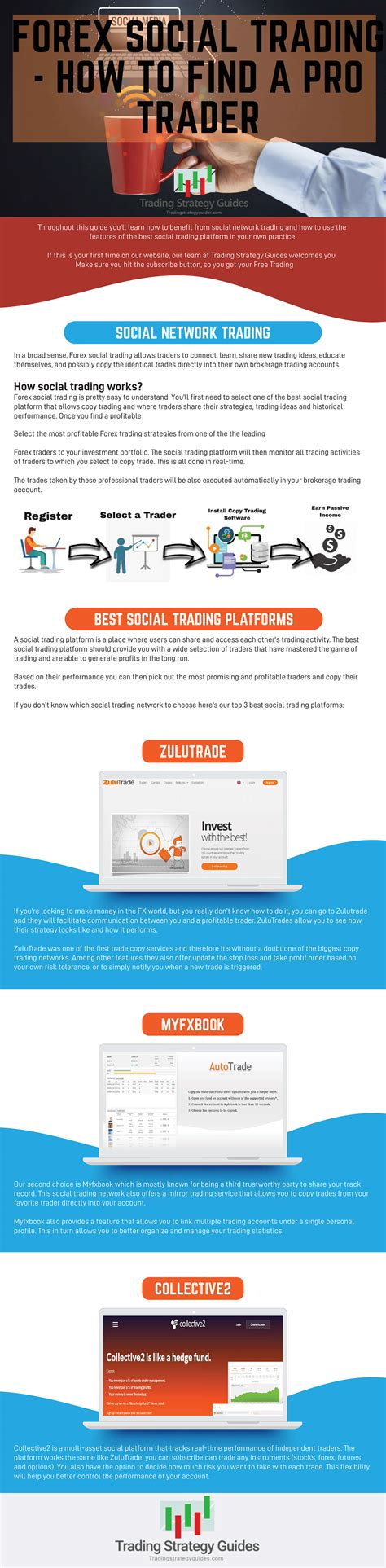 best social trading forex social trading how to find a pro trader