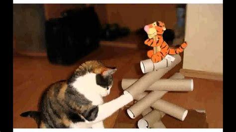 katzenspielzeug basteln ideen katzenspielzeug selber machen ideen