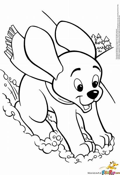 Coloring Pages Puppy Dog Printable Winter Puppies