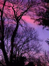 Pink and Purple Sunset Screensaver