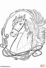 Coloring Horse Nouveau Horses Drawing Printable Line Getdrawings Animal Categories sketch template