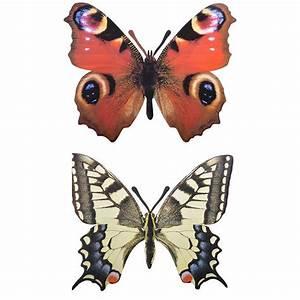 Papillon Décoration Murale : d coration murale papillon lot de 2 ~ Teatrodelosmanantiales.com Idées de Décoration