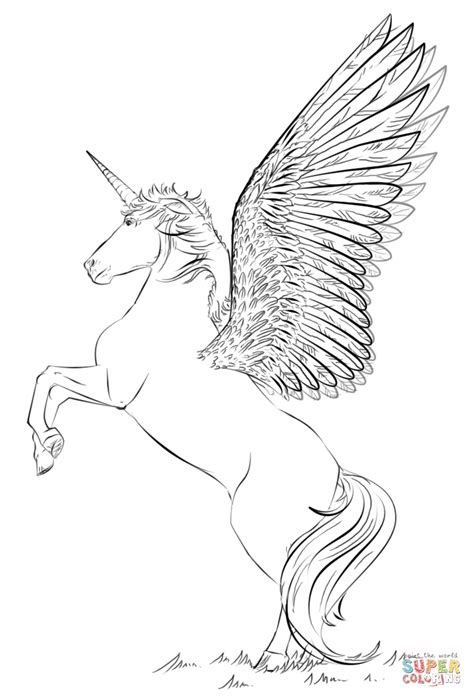 unicorn  wings coloring page  printable coloring pages