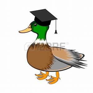 mallard : A funny duck in a | Clipart Panda - Free Clipart ...