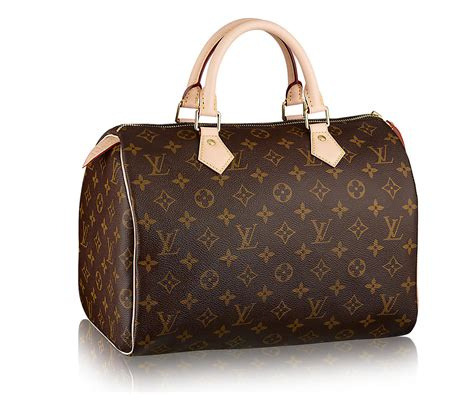 Louis Vuitton Canvas & Leather
