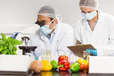 multiplying benefits implementing food safety in the