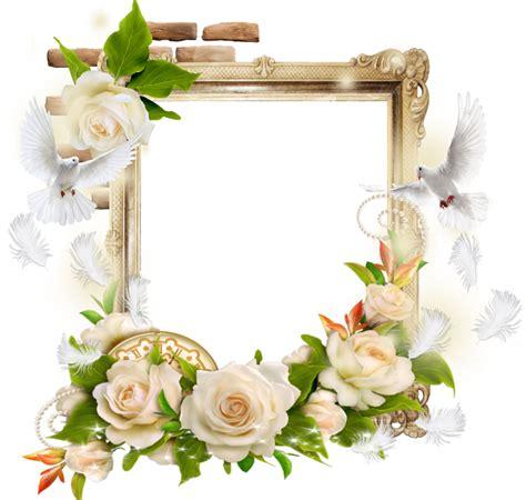 beau cadre fleurs