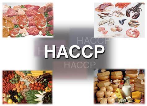 ccp cuisine haccp l 39 attestato per chi lavora a contatto con cibo e