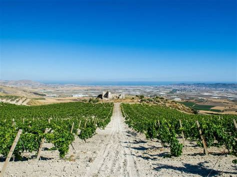 wineries quignones licata agrigento  sicily winery