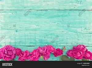 Frame Roses On Turquoise Rustic Image & Photo   Bigstock