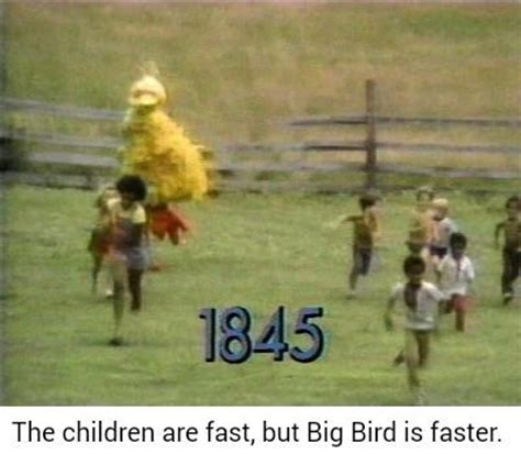 Big Bird Memes - are big bird memes on the rise or are they too similar to cat in the hat memes memeeconomy