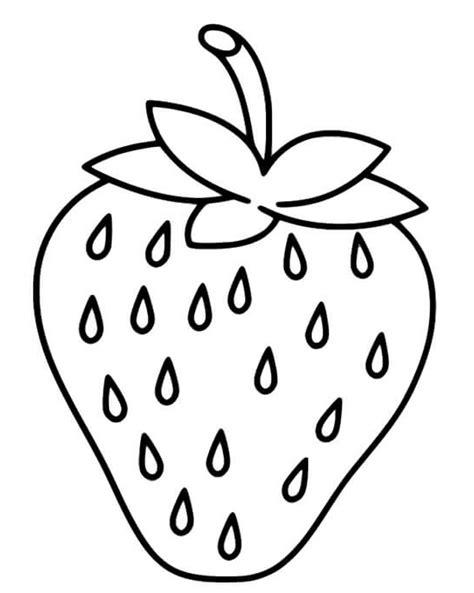 menakjubkan 25 contoh gambar buah buahan lengkap