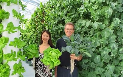 Garden Tower Aeroponic Greenhouse Growing Farming Future