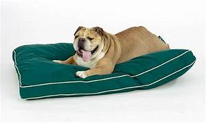 best dog bed for arthritic dog home design ideas With best dog beds for arthritic dogs