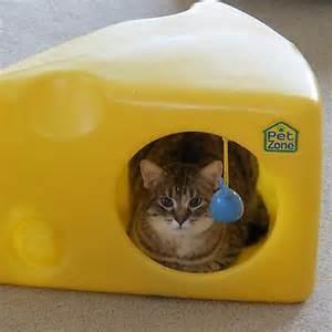 cheese cat pet zone swiss cheese cat house indoor outdoor cat