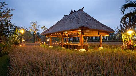 bebek tepi sawah restaurant  villas  restful retreat