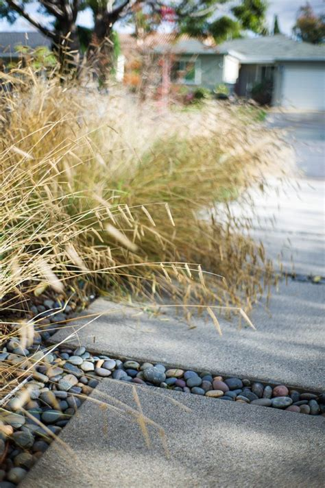 permeable hardscape pacific horticulture society designing for the new normal