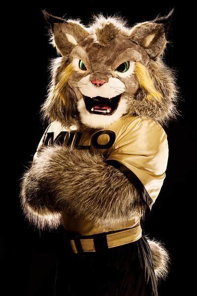 milo  lynx   mascot  university