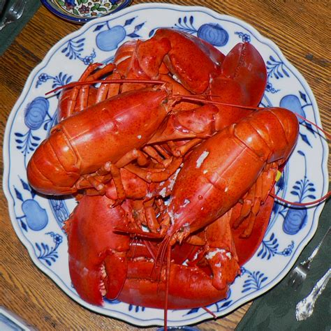 how to boil lobster tails how to cook frozen lobster tail all new info
