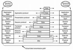 Explain Osi Reference Model In Detail With Diagram