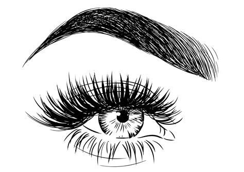 Eyelashes and eyebrows vector logo stock illustration. Eyelash Vector Logo - Clipart & Vector Design