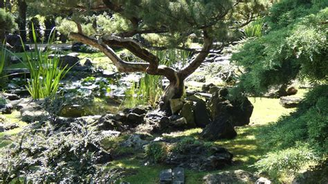 Japanischer Garten Schönbrunn by Japanischer Zen Garten Sch 246 Nbrunn
