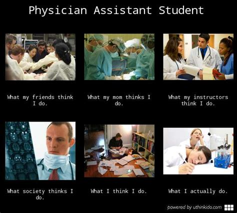 Medical Assistant Memes - the pa journey a canadian perspective june 2013