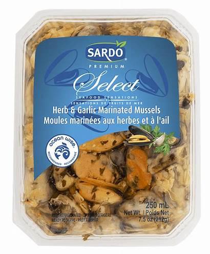 Garlic Mussels Herb Marinated Select Sardo Foods