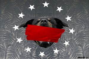 Givenchy Type Rottweiler Background Tape (Tagged) by ...
