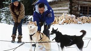 Snow Dogs - 8 Helden auf 4 Pfoten - Film - SAT.1
