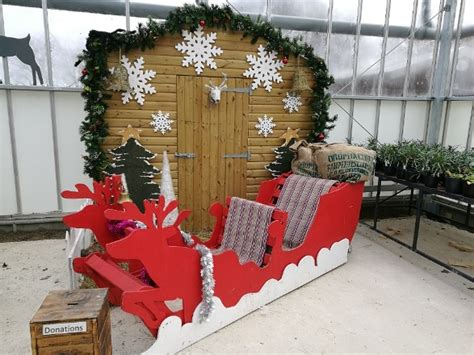 The Locals' Guide To Christmas Trees In Harrogate Hamshire Wooden Barrel Coffee Table Dining Luggage Trunk Tables From Ikea Painting Pine With Storage Pinterest Ideas Under 0