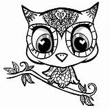 Owl Coloring Owls Pages Colouring Printable Cute Cartoon Sheets Colour Adult Sheet Simple Animal Dream Wild Adults Eyes Baby Printables sketch template