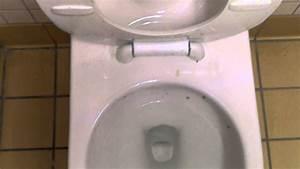 Toilette Auf Spanisch : 4964 brand new back spud gpf american standard afwall toilet with everclean glaza youtube ~ Buech-reservation.com Haus und Dekorationen